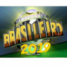 Brasileirão 2019 (SIMULADOR)