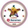 Copa Banamex Libertadores