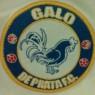 Galo de Prata F.C.