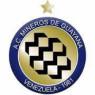 Mineiros de Guayana